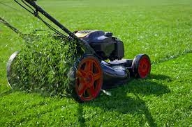 Your Complete Lawn Care Guide